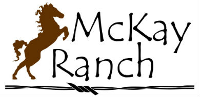 McKay_logo_with_right_font_390x190.jpg